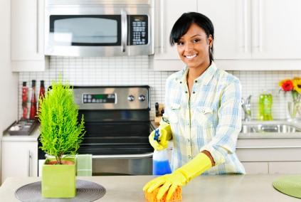 Професионално почистване, абонаментно почистване, почистване на домове
